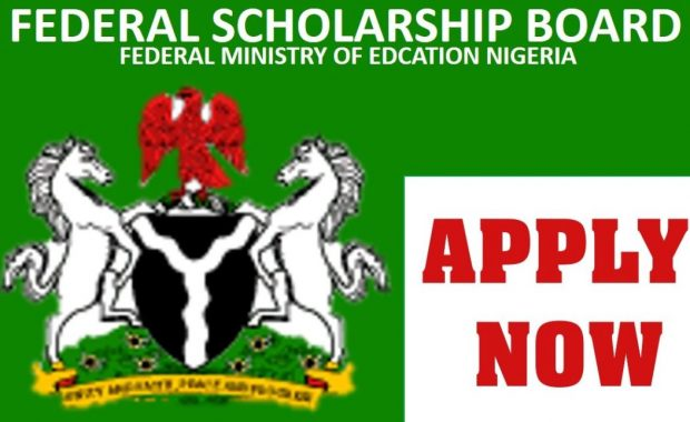 This is the Federal Ministry of Education Overseas Scholarships for Undergraduate, Masters and PhD Nigerian Students