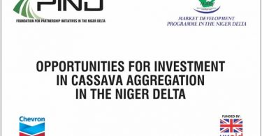 Senior Investment Manager Vacancy at Market Development in the Niger Delta (MADE-II)