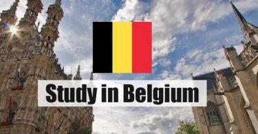 Top 8 Best Scholarships in Belgium for International Students