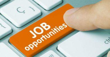 Job Vacancy For Online Sales Representative at McPeniel Associate