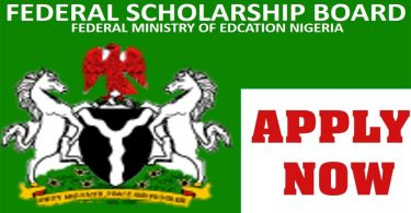 How Best to Apply for Nigerian University Scholarships and Land Awards