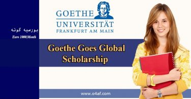 2020 Goethe Goes Global Scholarship in Germany