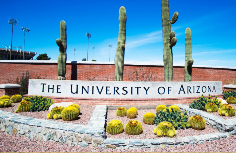 $9,000 University of Arizona Scholarship | Freshmen and Transfer Students