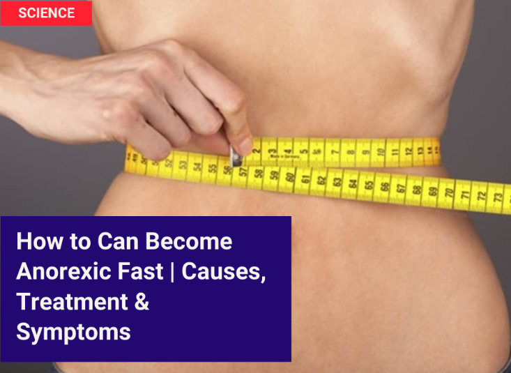 How to Can Become Anorexic Fast ( Causes, Treatment & Symptoms)